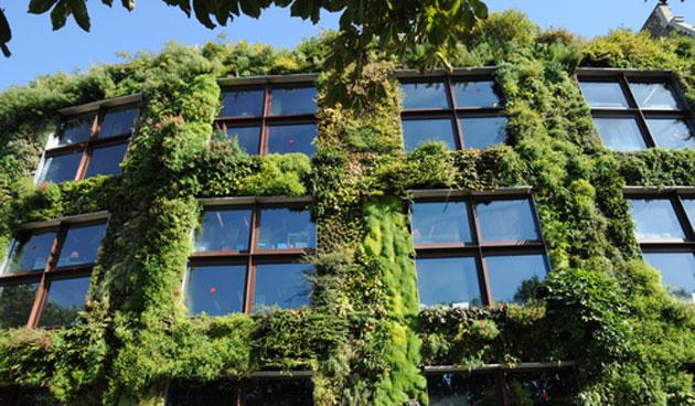 Verticale tuin maken tuinseizoen for Verticale tuin systeem
