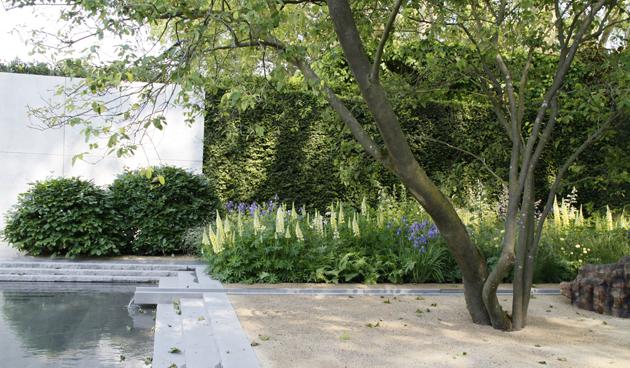 4 x ontwerpen met planten tuinseizoen - Boom ontwerp ...