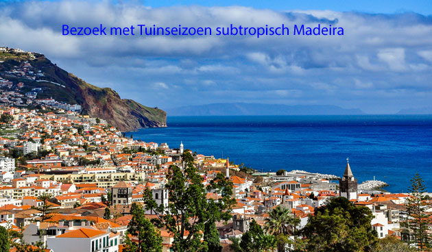 Subtropisch Madeira